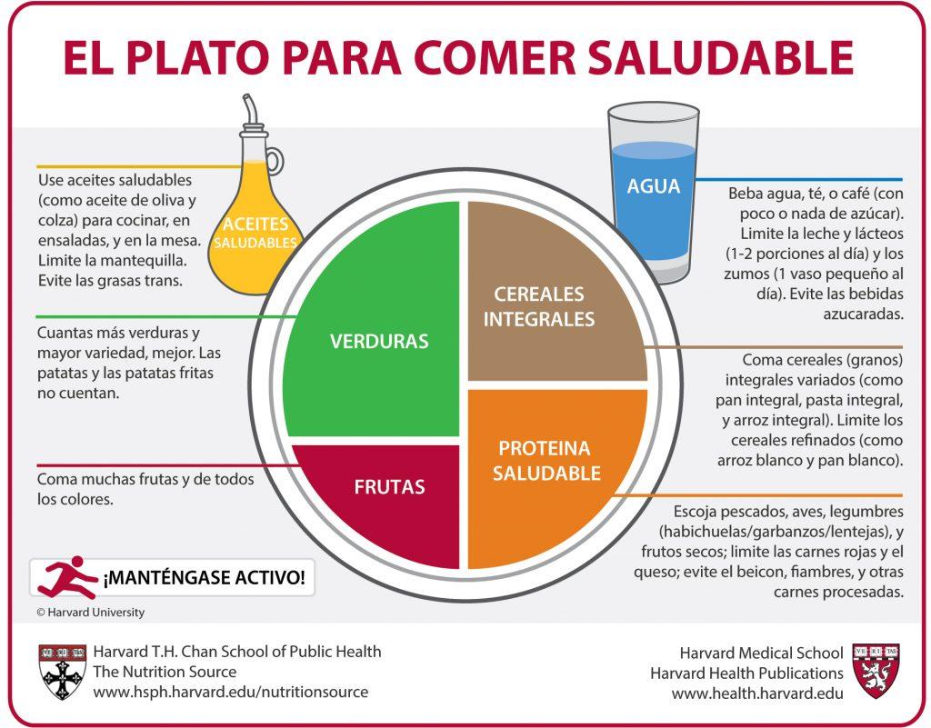 platos y comidas saludables