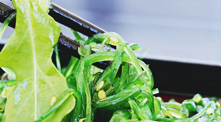 plato de ensalada con algas marinas
